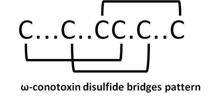 omega-conotoxin, ω-conotoxin